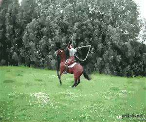 horse jump rope