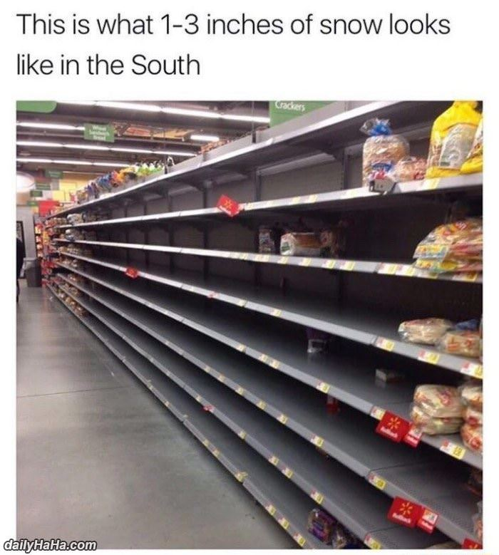 1 to 3 inches of snow in the south die or funny hilarious picture