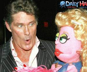 The Hoff loves it
