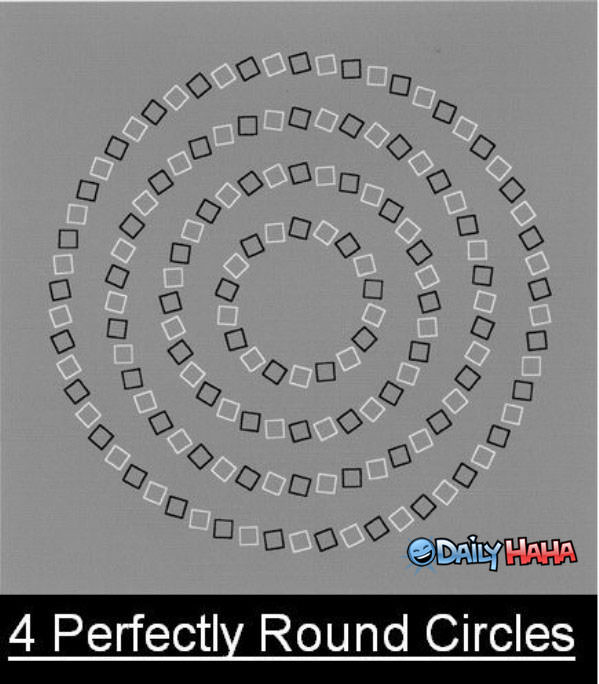 Can you see the round circles