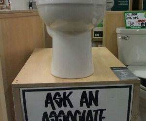 Qualified Job funny picture