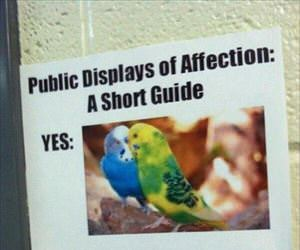 a short guide