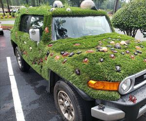 a very green car