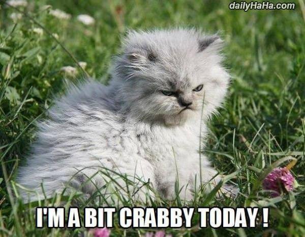 A Bit Crabby
