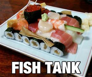 a fish tank funny picture