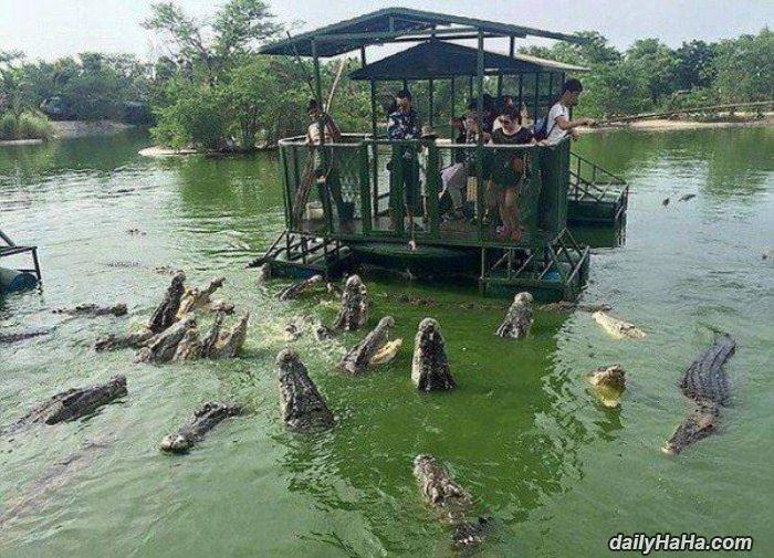 a fun boat ride funny picture