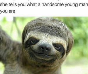 a handsome young man funny picture