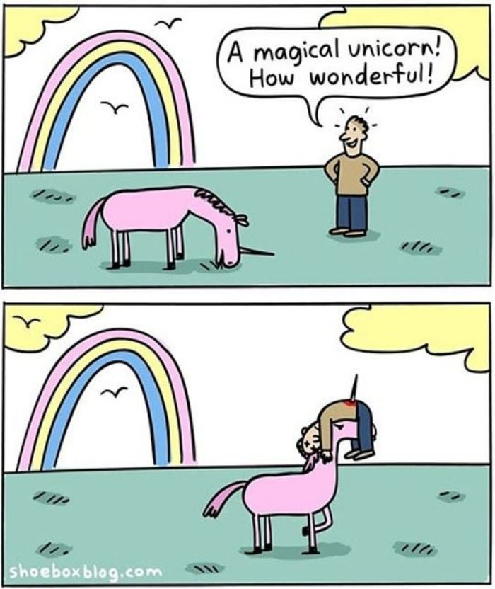 a magical unicorn funny picture