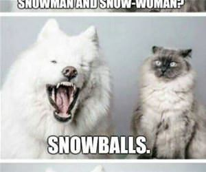 a snowman and a snowwoman funny picture