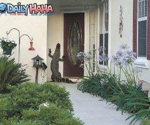 alligator at the door