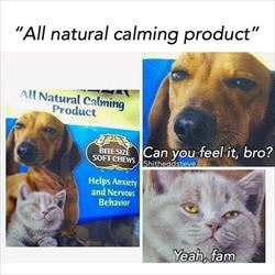 all natural calming product