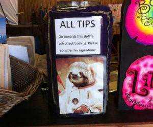 All Your Tips funny picture