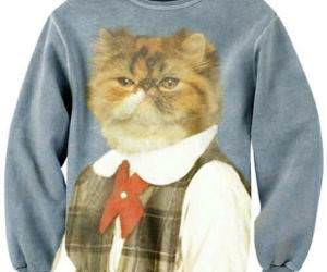 Amazing Sweater funny picture