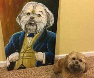 amazing portrait funny picture