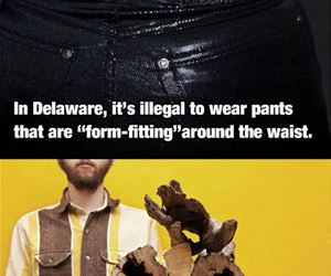 americas most bizarre laws funny picture