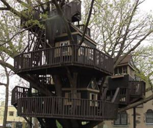 an epic tree house funny picture