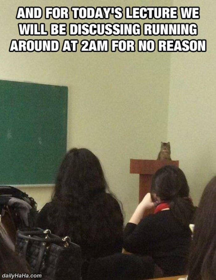 and for todays lecture funny picture