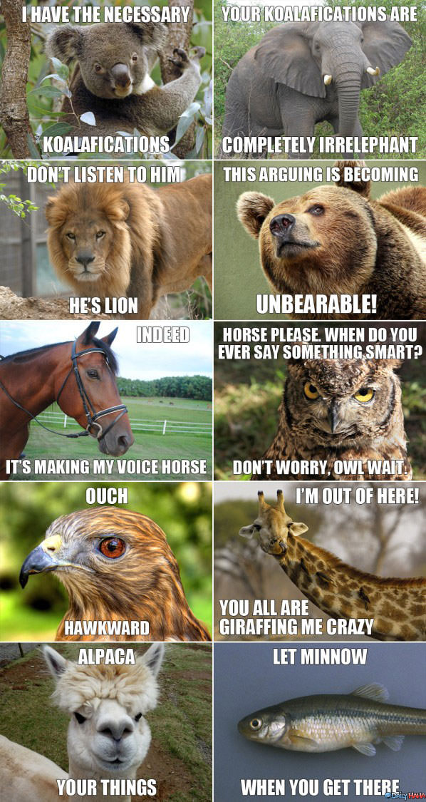 Animal Puns funny picture