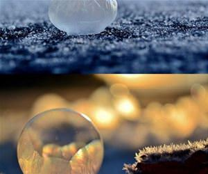 awesome frozen bubbles funny picture
