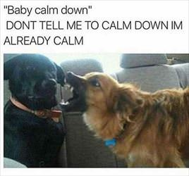 baby calm down