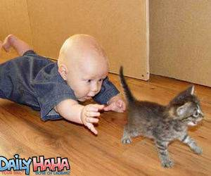 Baby Chasing a Kitten