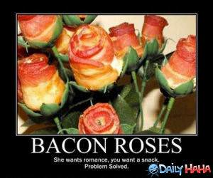 Bacon Roses funny picture