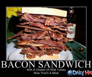 Bacon Manwich funny picture