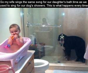 Bath Time Song funny picture