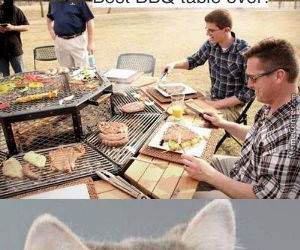 bbq table funny picture