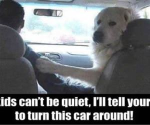 be quiet back there funny picture