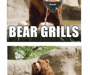 bear grylls funny picture