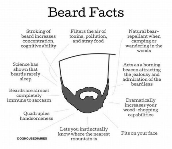 Beard Facts funny picture