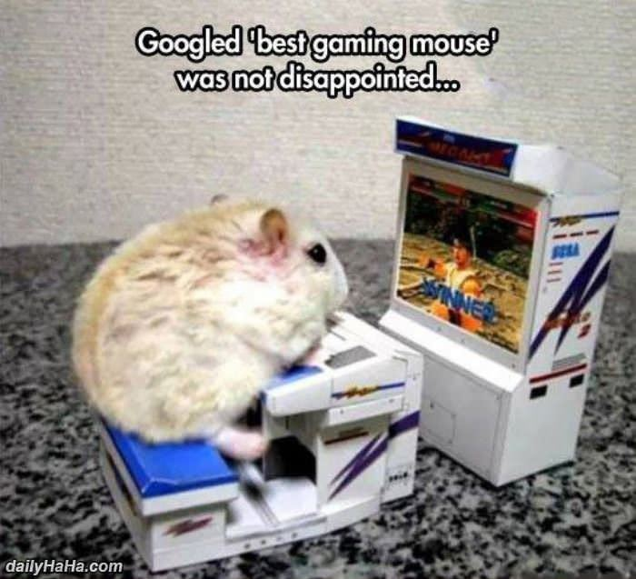 gaming mouse funny