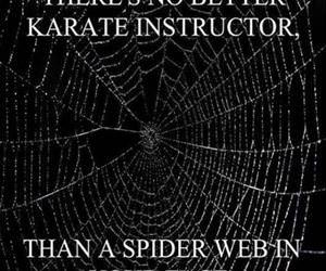 best karate instructor funny picture