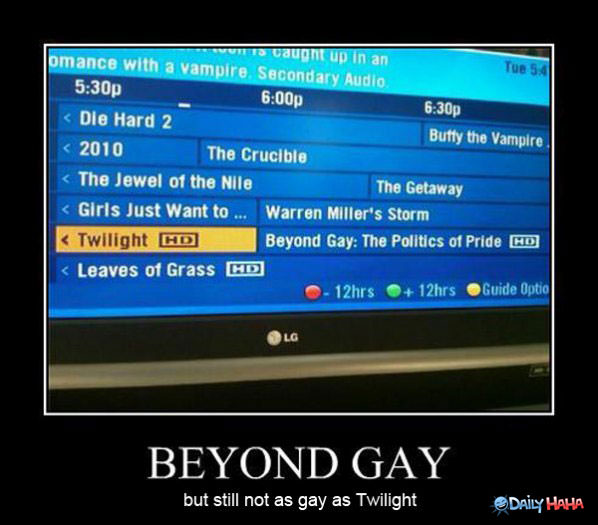 Beyond Gay funny picture