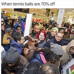 big sale on tennis balls