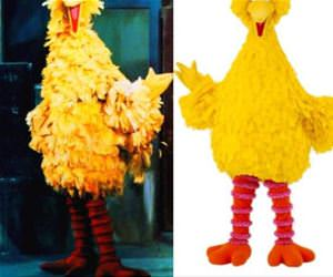 big bird has changed funny picture