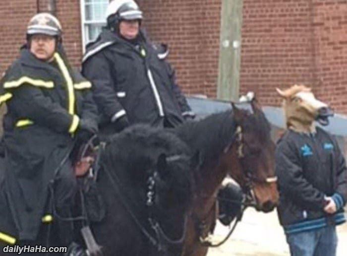 Blending In Horse