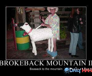 Brokeback Mountain 2 funny picture