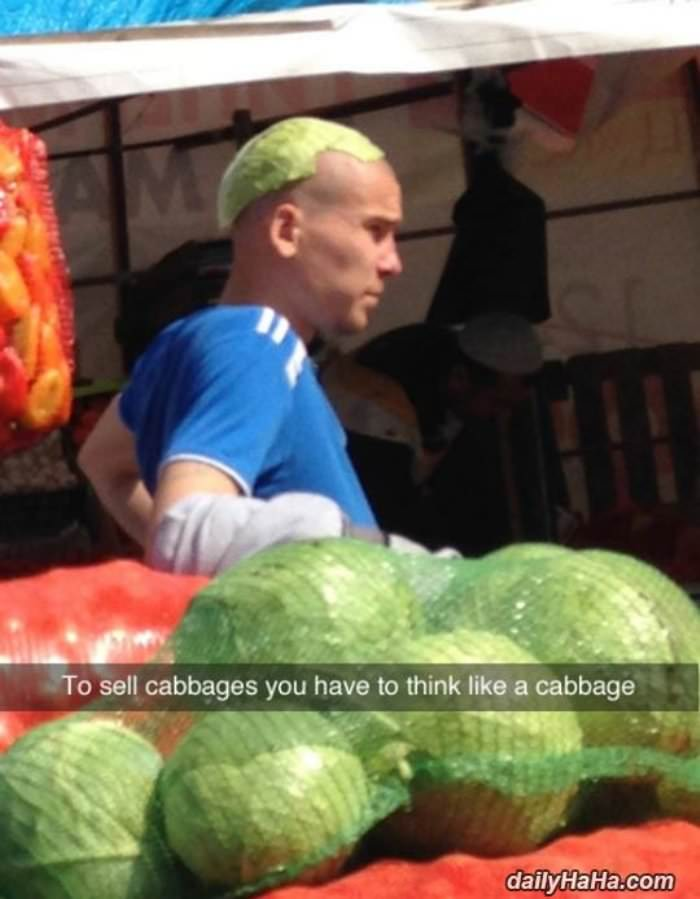 cabbage salesman funny picture