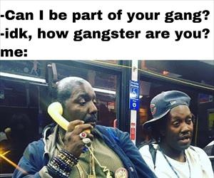 can i be in your gang