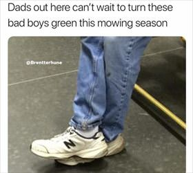cannot wait for these bad boys to turn green