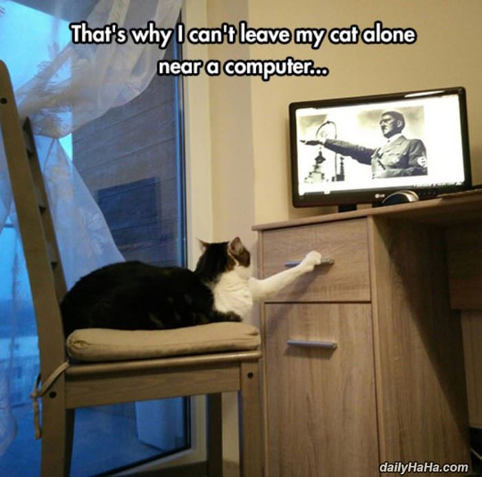 cannot leave my cat funny picture