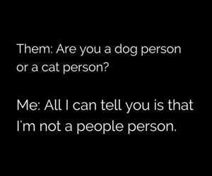 cat or a dog person funny picture