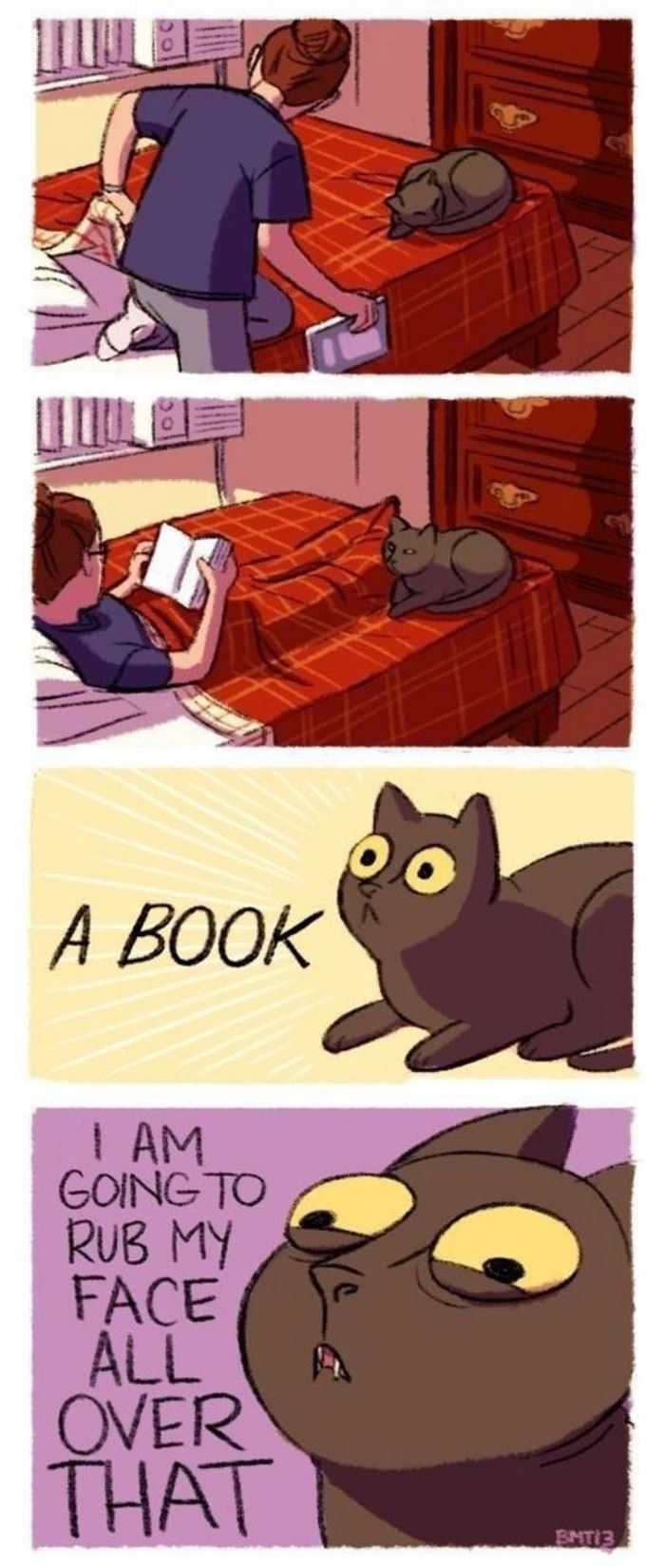 cats love books funny picture