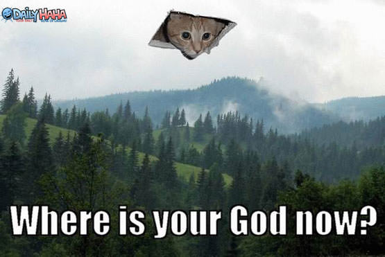ceiling_cat_god.jpg
