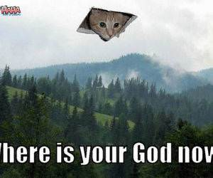 Ceiling Cat God