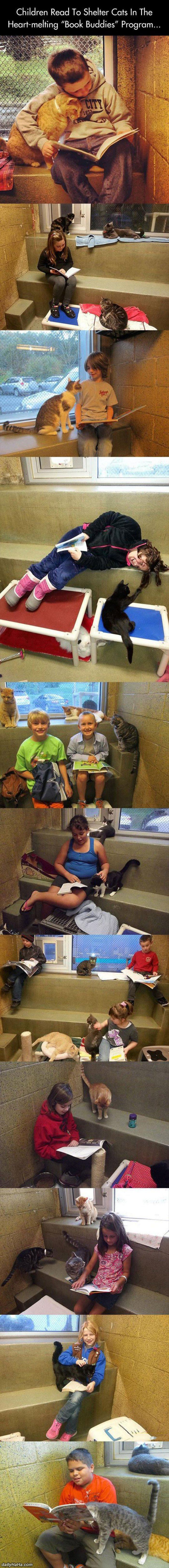 children reading to shelter animals funny picture