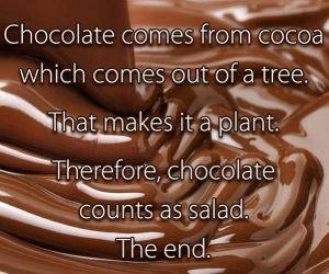 Chocolate Logic funny picture