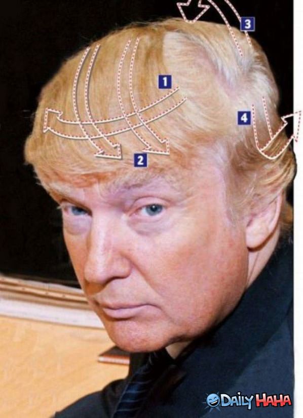 Comb Over Explained funny picture